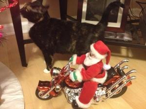 B Santa