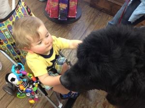 Meeting the giant doggie at Mast General Store in Boone, NC.
