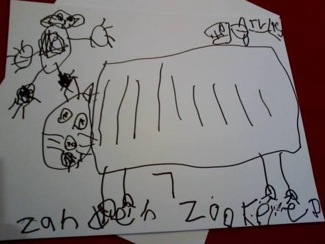 Zander, age 7.