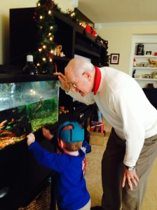 Checking out the turtles with Grandpa John.